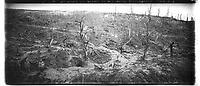 Vue panoramique des abris allemands du ravin du Fruty à Nanteuil-la-fosse (Aisne). 9 novembre 1917. Guerre 1914-1918.