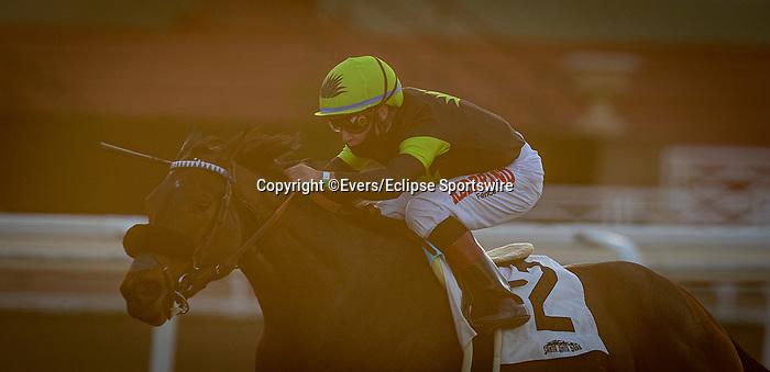 January 09, 2021: Charmaine's Mia with Drayden Van Dyke wins the La Cienegas Stakes at Santa Anita Park in Arcadia, California on January 9, 2021. Evers/Eclipse Sportswire/CSM