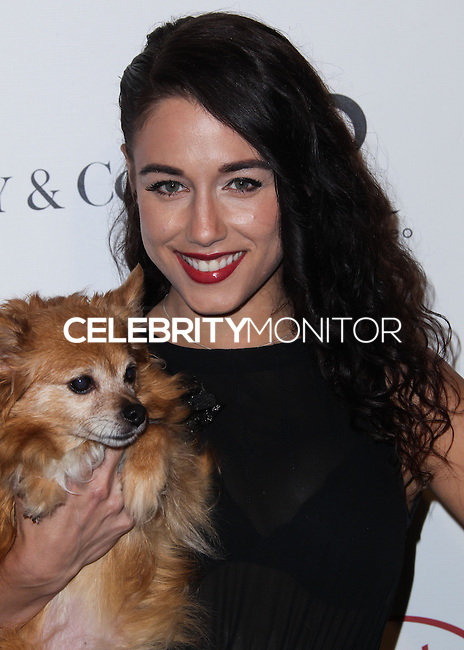 """BEVERLY HILLS, CA - OCTOBER 27: Actress Jade Tailor arrives at the """"Bow Wow Beverly Hills"""" Presents The Big Bark Theory Halloween Event benefiting The Amanda Foundation held at Two Rodeo Drive on October 27, 2013 in Beverly Hills, California. (Photo by Xavier Collin/Celebrity Monitor)"""