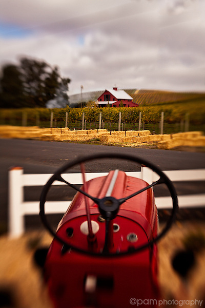 Red bard and red tractor in Napa