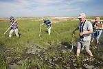 Bob,  Mary, Judith & Diane On Horseshoe Crab Survey