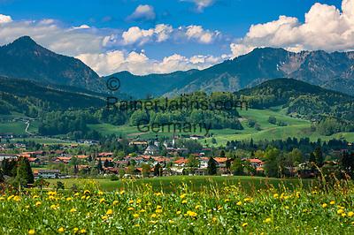 Deutschland, Bayern, Oberbayern, Chiemgau, Inzell: Fruehling im Chiemgau mit dem Chiemgauer Alpen im Hintergrund   Germany, Upper Bavaria, Chiemgau, Inzell: springtime scenery with Chiemgau Alps at background
