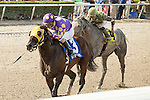 HALLANDALE BEACH, FL- APRIL 02: #3 Grande Shores ridden by jockey Edgard Zayas wins the Sir Shackleton Stakes at Gulfstream Park on April 02, 2016 in Hallandale Beach, Florida. (Photo by Arron Haggart/Eclipse Sportswire/Getty Images)