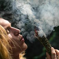 Räuchern mit Räucherbündel, Räucherbüschel, Räucherritual, Sommersonnenwende, Mittsommer, Räuchern mit Kräutern, Kräuter verräuchern, Wildkräuter, Duftkräuter, Duft, Smoking with herbs, wild herbs, aromatic herbs, fumigate, cure. Oregano, Wilder Dost, Echter Dost, Oreganum, Gemeiner Dost, Origanum vulgare, Oregano, Wild Marjoram. Tüpfel-Johanniskraut, Echtes Johanniskraut, Tüpfeljohanniskraut, Hypericum perforatum, St. John´s Wort. Gewöhnlicher Beifuß, Beifuss, Artemisia vulgaris, Mugwort, common wormwood. Rainfarn, Rain-Farn, Tanacetum vulgare, Chrysanthemum vulgare, Tansy. Walnussblätter, Walnuß, Walnuss, Walnuß, Wal-Nuss, Wal-Nuß, Juglans regia, Walnut, Noyer commun. Königskerze, Königs-Kerze, Verbascum spec., Mullein