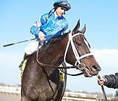 It's Tricky and Ramon Dominquez after the mare wins her first race of 2012, the Top Flight at Aqudeuct.
