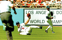 Mike Marshall of the Los Angeles Dodgers makes a sliding catch in right field against the Houston Astros at Dodger Stadium Thursday April 13, 1989. The Astros won the game 4-2. (Photo by Alan Greth)