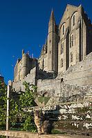 Europe/France/Normandie/Basse-Normandie/50/Manche: Baie du Mont Saint-Michel, classée Patrimoine Mondial de l'UNESCO, Le Mont Saint-Michel , L'abbatiale // Europe/France/Normandie/Basse-Normndie/50/Manche: Bay of Mont Saint Michel, listed as World Heritage by UNESCO,  The Mont Saint-Michel,  the Abbey Church