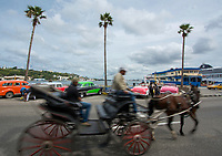 Havana, Cuba - a horse-drawn cart passes a row of classic 1950s American cars on Avenida del Puerto near Havana harbor. American cars from the 1950s, imported before the U.S. embargo, are commonly used as taxis in Havana.