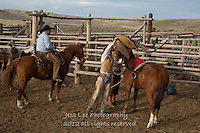 getting ready Cowboys working and playing. Cowboy Cowboy Photo Cowboy, Cowboy and Cowgirl photographs of western ranches working with horses and cattle by western cowboy photographer Jess Lee. Photographing ranches big and small in Wyoming,Montana,Idaho,Oregon,Colorado,Nevada,Arizona,Utah,New Mexico. Fine Art Limited Edition Photography Of American Cowboys and Cowgirls by Jess Lee