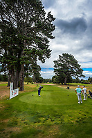 Kerry Mountcastle tees off at the 6th. Day two of the Jennian Homes Charles Tour / Brian Green Property Group New Zealand Super 6s at Manawatu Golf Club in Palmerston North, New Zealand on Friday, 6 March 2020. Photo: Dave Lintott / lintottphoto.co.nz