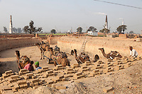 Rajasthan, India.  Men Build the Next Brick-firing Furnace with New Unfired Mud Bricks Delivered on Camel-drawn Carts.