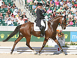 01 October 2010. 572 Michael Jung and La Biosthetique-Sam FBW from Germany lead the way in eventing dressage.