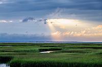 Grays Beach salt marsh wetlands