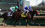 September 14, 2019 : Lazy Daisy (#4, Abel Cedillo) wins the Pocahontas Stakes at Churchill Downs, Louisville, Kentucky. Trainer Doug O'Neill, owner ERJ Racing LLC (Eric Johnson), Great Friends Stable LLC (Scott Kaplan), and Tom Mansor. By Paynter x Romantic Intention (Suave) Mary M. Meek/ESW/CSM