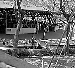 West Mifflin PA:  View of the Merry-Go-Round at Kennywood Park.  The Stewart and Panneton families visited Kennywood during the fall of 1956, families in the foreground.  Kennywood Park is one of the oldest amusement parks in America, founded in 1898. Kennywood Park was a big part of our childhood in the Pittsburgh area. At the end of each school year, most school districts had a Kennywood Park Day.  The rides included the roller coasters; Jackrabbit, Racer, and Thunderbolt along with the infamous Old Mill where you could steal a kiss or two.  Kennywood was designated a National Historic Landmark since 1987