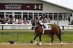 May 17, 2014. Happy My Way, Joe Bravo up, wins the Grade III Maryland Sprint Handicap at Pimlico Race Course in Baltimore, MD. Happy My Way is owned by Sagamore Farm and Mel Paikoff, and trained by Joseph Orseno. ©Joan Fairman Kanes/ESW/CSM