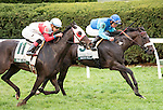 LEXINGTON, KY - OCT 14: Miss Ella, #9, ridden by Joel Rosario and trained by H. Graham Motion wins the Grade 3 Buffalo Trace Franklin County Stakes at Keeneland Racetrack in Lexington, KY. (Photo by Samantha Bussanich/Eclipse Sportswire/Getty Images)