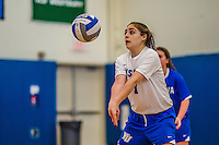 27 October 2013: Yeshiva University Maccabee Defensive Specialist Shira Genauer, a Senior from Seattle, WA, in action during a Skyline Conference game against the Purchase College Panthers at the College of Mount Saint Vincent in Riverdale, NY. The Panthers defeated the Maccabees 3-0 in NCAA women's volleyball play. Mandatory Credit: Ed Wolfstein Photo *** RAW (NEF) Image File Available ***
