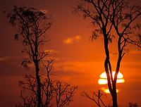 Sunset in Emas National Park.