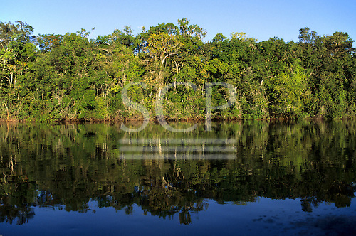 Juruena, Amazon, Brazil. Rainforest river bank reflected in the water of the river. Mato Grosso State.