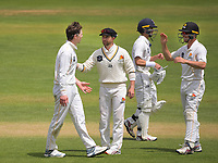 Devon Conway and Lachie Johns (right) congratulate Michael Bracewell for his caught-and-bowled dismissal of Graeme Beghin during day four of the Plunket Shield match between the Wellington Firebirds and Auckland Aces at the Basin Reserve in Wellington, New Zealand on Tuesday, 17 November 2020. Photo: Dave Lintott / lintottphoto.co.nz