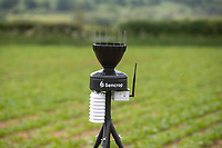 10-6-2021 Weather station in crop of sugar beet in Rutland<br /> ©Tim Scrivener Photographer 07850 303986<br />      ....Covering Agriculture In The UK....