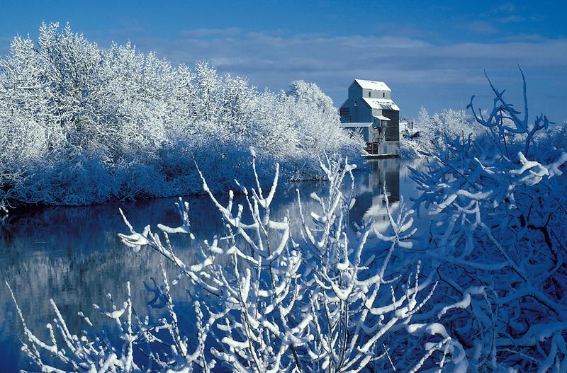 F00040.tiff   Kompf Grain Mill and Longtom River after fresh snowfall with reflection. Oregon