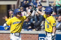 Michigan Wolverines shortstop Michael Brdar (9) is greeted by teammate Nick Poirier (28) after scoring against the Illinois Fighting Illini during the NCAA baseball game on April 8, 2017 at Ray Fisher Stadium in Ann Arbor, Michigan. Michigan defeated Illinois 7-0. (Andrew Woolley/Four Seam Images)
