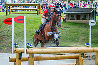 USA-Bruce Davidson Jr rides Jak My Style during the Cross Country. 2019 GBR-Land Rover Burghley Horse Trials. Saturday 7 September. Copyright Photo: Libby Law Photography