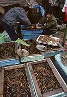 Asie/Chine/Jiangsu/Env Nankin: Marché libre de la rue Shan-Xi - Marchand d'anguilles<br /> PHOTO D'ARCHIVES // ARCHIVAL IMAGES<br /> CHINE 1990