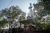 India, New Delhi, cell phone tower.
