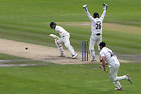 Billy Root of Glamorgan is given out lbw to Sussex bowler, Stiaan Van Zyl during Sussex CCC vs Glamorgan CCC, LV Insurance County Championship Group 3 Cricket at The 1st Central County Ground on 5th July 2021