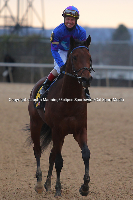 January 18, 2016: Discreetness jockey Jon Court is all smiles after winning the Smarty Jones Stakes at Oaklawn Park in Hot Springs, AR. Justin Manning/ESW/CSM
