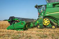 Harvesting winter barley - Norfolk, July