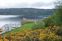 Ruine des Urquhart Castle nahe der Ortschaft Lewinston am Loch Ness in den North West Highlands.<br /> 25.5.2015, Highlands/Schottland<br /> Copyright: Christian-Ditsch.de<br /> [Inhaltsveraendernde Manipulation des Fotos nur nach ausdruecklicher Genehmigung des Fotografen. Vereinbarungen ueber Abtretung von Persoenlichkeitsrechten/Model Release der abgebildeten Person/Personen liegen nicht vor. NO MODEL RELEASE! Nur fuer Redaktionelle Zwecke. Don't publish without copyright Christian-Ditsch.de, Veroeffentlichung nur mit Fotografennennung, sowie gegen Honorar, MwSt. und Beleg. Konto: I N G - D i B a, IBAN DE58500105175400192269, BIC INGDDEFFXXX, Kontakt: post@christian-ditsch.de<br /> Bei der Bearbeitung der Dateiinformationen darf die Urheberkennzeichnung in den EXIF- und  IPTC-Daten nicht entfernt werden, diese sind in digitalen Medien nach §95c UrhG rechtlich geschuetzt. Der Urhebervermerk wird gemaess §13 UrhG verlangt.]