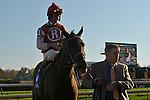1 November 2009: Robby Albarado aboard Sassy Image take the G3 Pocahontas Stakes at Churchill Downs in Louisville, Kentucky.