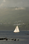 Whaling canoes race during the Whaling festival of Lajes.  Pico island