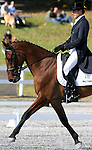 17 October 2008:  Australian rider Boyd Martin and Belmont II sit tied for tenth place after the dressage section of the Fair Hill International CCI*** Championship at Fair Hill Equestrian Center in Fair Hill, Maryland.  Dressage is the first stage of the three-day event.