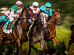 SARATOGA SPRINGS, NY - AUGUST 26: Lady Eli #1, ridden by Irad Ortiz Jr. wins the Woodford Reserve Ballston Spa Stakes at Saratoga Race Course on August 26, 2017 in Saratoga Springs, New York.(Photo by Alex Evers/Eclipse Sportswire/Getty Images)
