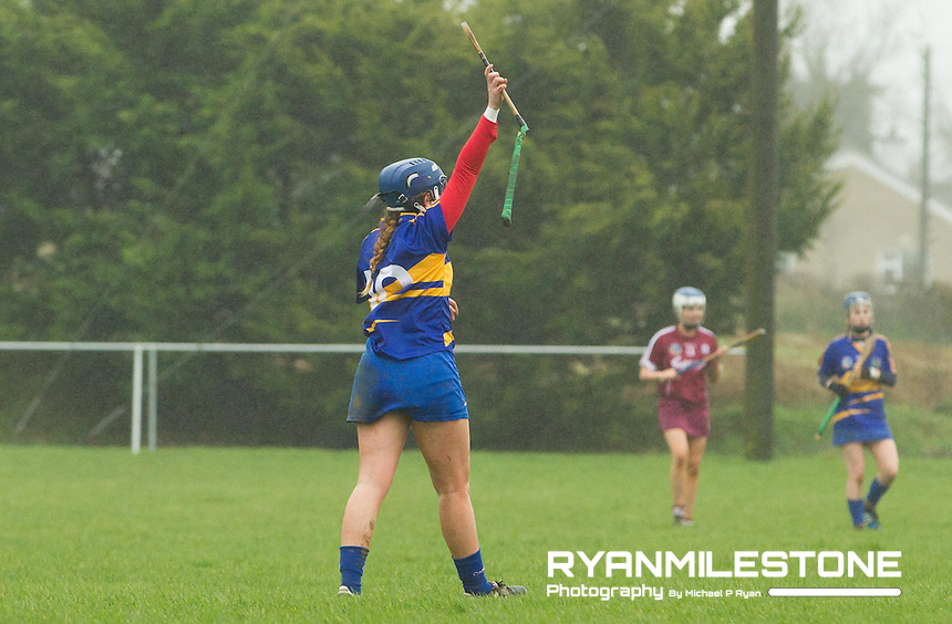 Irish Daily Star Camogie League Division One<br /> Tipperary v Galway<br /> Shauna Quirke (Tipperary) breaks her hurley