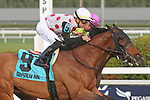 January 18, 2020: #9 March to the Arch with jockey Tyler Gaffalione on board wins the Sunshine Millions Turf Stakes Black Type at Gulfstream Park in Hallandale Beach, Florida, on January 18th, 2020. LizLamont/Eclipse Sportswire/CSM
