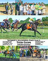 Tricky Escape winning The Robert Dick Memorial Stakes (grade 3) at Delaware Park on 7/7/18 <br /> To see the other version of this composite search Tricky Escape, winphoto