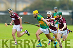 Lixnaw's John Buckley in possession despite the attention from Sean Sheehan and Billy Lyons of Causeway in their round 1 game of the North Kerry Hurling Championship.