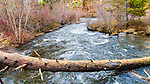 Tumalo Creek at Larch Grove, Shevlin Park, Bend, Oregon Park and Recreation, along scenic Tumalo Creek includes hiking, biking, foot bridges, aspen trees, and pine forests on the west side of Bend.