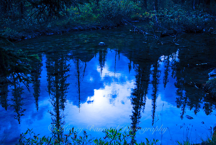 """""""EVENING REFLECTIONS""""<br /> <br /> Evening is quickly approaching. The crickets chirp their welcome. The setting sun reflects off a river pool and the dark forest lends an eerie feeling to the landscape. And yet, the still and crystal clear water brings a certain serenity to the scene. The rich and brooding blues seem to beckon one to linger and engage in reflections of his own.<br /> <br /> This pool belongs to the Bow River and the evening will forever belong to this photograph. I have spent considerable time attempting to photograph the Bow River and it's many faces. One could spend a lifetime and never capture them all. It is undoubtedly one of the most beautiful rivers in the world. This particular image was captured near Lake Louise in Banff National Park - Alberta, Canada. ORIGINAL 24 X 36 GALLERY WRAPPED CANVAS SIGNED BY THE ARTIST $2,500. CONTACT FOR AVAILABILITY."""