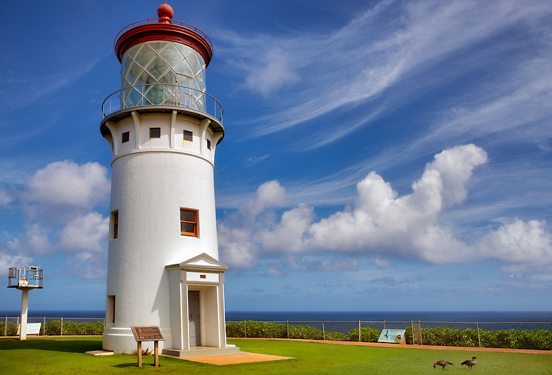Kilauea Lighthouse with two Nenes Geese. Kauai, Hawaii