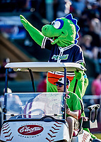 20 June 2021: Vermont Lake Monsters Mascot Champ waves to the fans between innings of a game against the Westfield Starfires at Centennial Field in Burlington, Vermont. The Lake Monsters fell to the Starfires 10-2 at Centennial Field, in Burlington, Vermont. Mandatory Credit: Ed Wolfstein Photo *** RAW (NEF) Image File Available ***