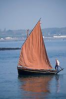 Europe/France/Bretagne/56/Morbihan/Golfe du Morbihan/Ile-Aux-Moines: Vieux grément  de type Guépard au Port du Lério