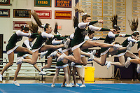Cheer Sectional 2015
