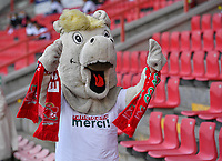 Essevee's Mascotte pictured during a female soccer game between Zulte Waregem and the KAA Gent Ladies on the fourth matchday of the 2020 - 2021 season of Belgian Scooore Womens Super League , saturday 10 October 2020  in Waregem , Belgium . PHOTO SPORTPIX.BE | SPP | DAVID CATRY